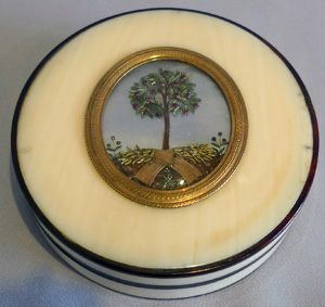 Antique George III ivory and tortoiseshell box with apple tree on mother-of-pearl background.